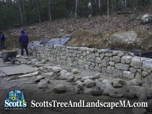 Building a fieldstone wall in Carlisle, MA by Scott's Tree & Landscape, Inc. (978) 496-9541