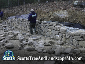 75ft fieldstone wall construction in Carlisle, MA.