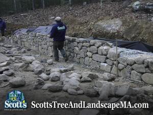 75ft fieldstone wall construction in Carlisle, MA.