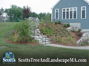 Commerical Landscape Design in Acton, MA by Scott's Tree & Landscape, Inc