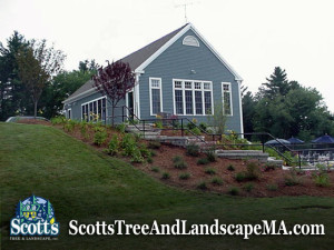 Commercial landscaping for Condominium in Acton, MA