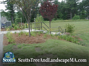 Commercial lawn maintenance and planting in Acton, MA