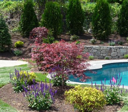 Landscape design in Westford, MA